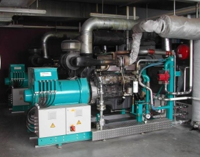 biogas cogeneration engine